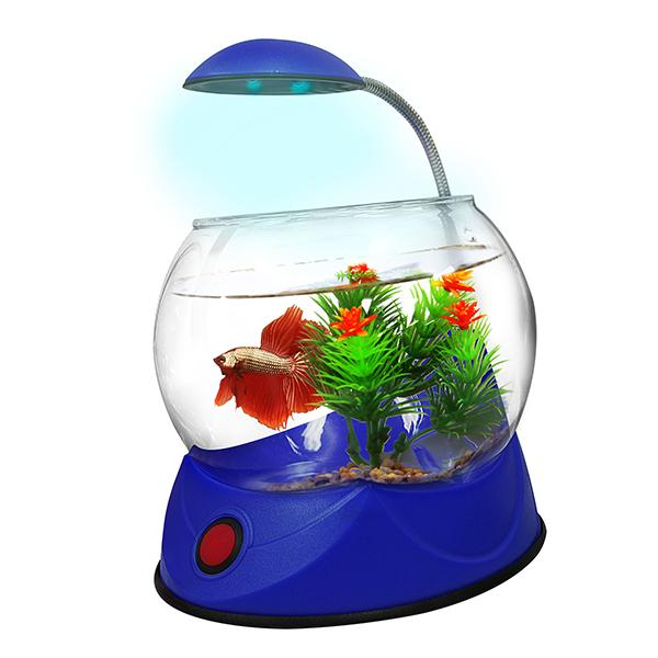 Betta bowl with light blue 1 8l aquarium tanks single for Betta fish tank light