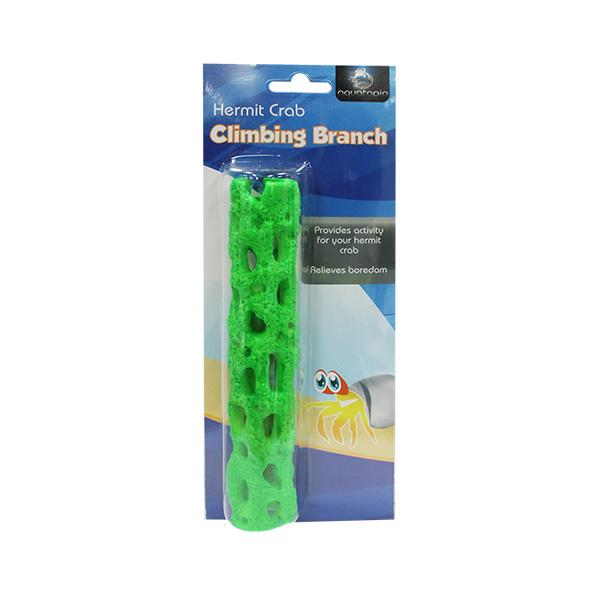 HERMIT CRAB CLIMBING TREE GREEN