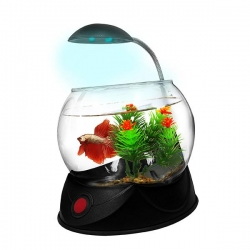 BETTA BOWL WITH LIGHT BLACK 1.8L - Click for more info