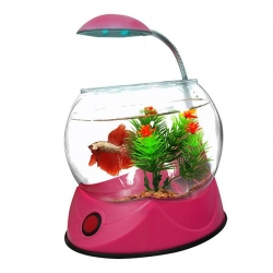 BETTA BOWL WITH LIGHT PINK 1.8L - Click for more info