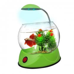 BETTA BOWL WITH LIGHT GREEN 1.8L - Click for more info