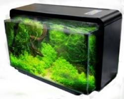 AQUASCENE NATURE 25 BLACK - Click for more info