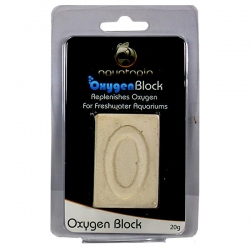 OXYGEN BLOCK 20G - Click for more info