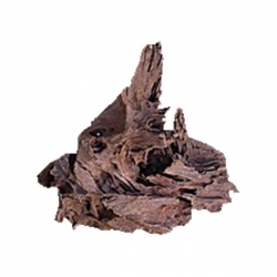 DRIFTWOOD 24-29CM (MIN BOX OF 30) - Click for more info