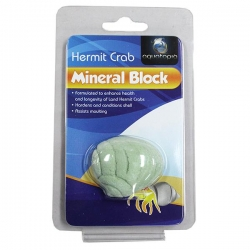 HERMIT CRAB MINERAL BLOCK - Click for more info