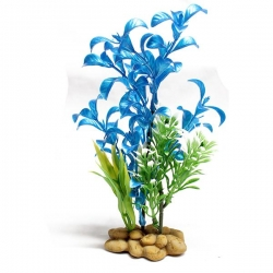 BLUE PLANT 20CM - Click for more info