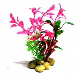 PINK PLANT 10CM - Click for more info