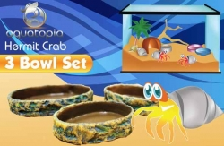 HERMIT CRAB THREE BOWL SET - Click for more info