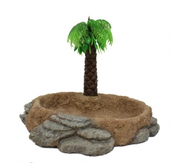 PALM TREE WITH BOWL - Click for more info