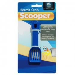 HERMIT CRAB SCOOP - Click for more info