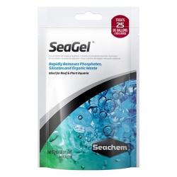 SEAGEL 100ML (24) - Click for more info