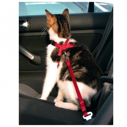 CAR HARNESS FOR CATS 2050CM/15MM RED - Click for more info