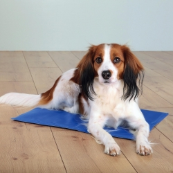 COOLING MAT 90X50CM BLUE - Click for more info