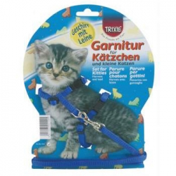 KITTEN HARNESS WITH LEAD NYLON - Click for more info