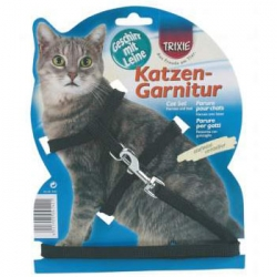 CAT SET WITH LEAD NYLON - Click for more info