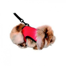 SOFT RODENT HARNESS FOR RABBITS & GPIGS - Click for more info