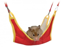 HAMMOCK FOR HAMSTERS & MICE 18X18CM - Click for more info