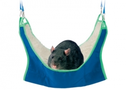 HAMMOCK FOR RATS & FERRETS 30X30CM - Click for more info